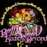 Bollywood Radio and Beyond